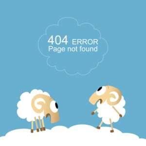 מתן שרותי רווה 404